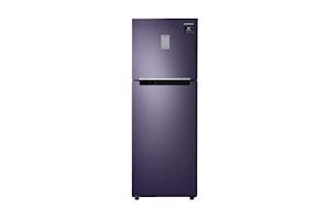 Samsung 253 L 2 Star Inverter Frost Free Double Door Refrigerator