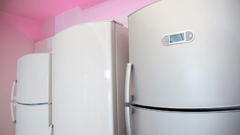 Best Frost Free Refrigerator in India – Convenient to Use